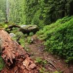 Mountainbike Strecken Bayern: Hike und Bike zur Hohen Kiste