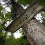 Mountainbike Oberammergau: Die großer Oberammergau-Runde