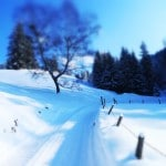 Lenggries Wandern: Bergwanderungen in den Alpen zum Seekarkreuz