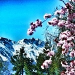Mountainbike Naturns: Von Naturns zum Sonnenbichel