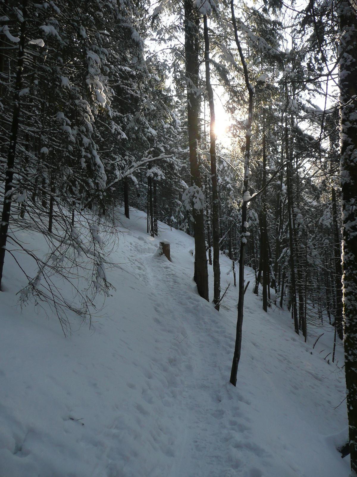 Winterwanderung in Bayern: Hinauf zum Seekrarer am Schliersee
