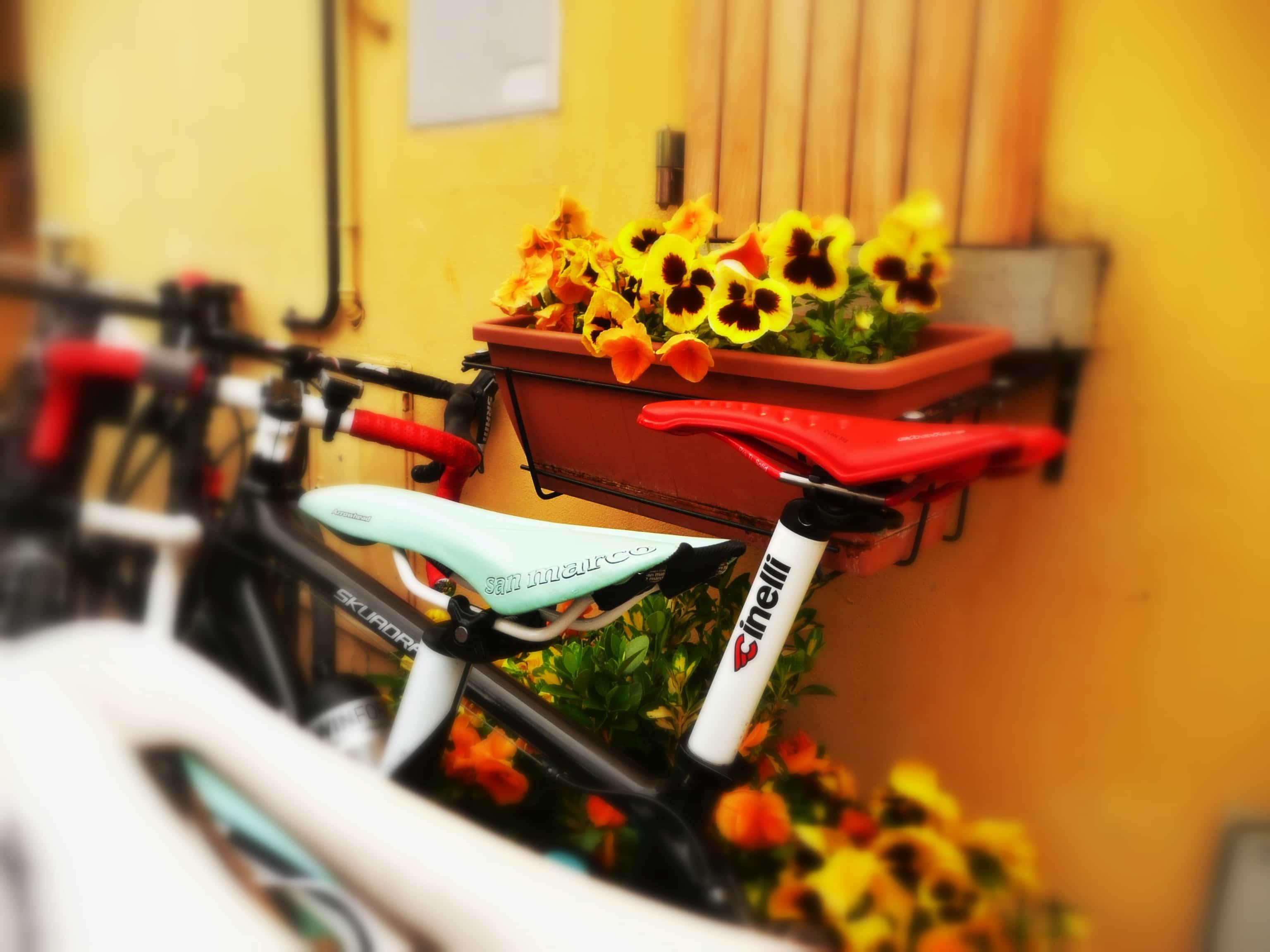 Mountainbike in Italien: Hinauf nach San Marino