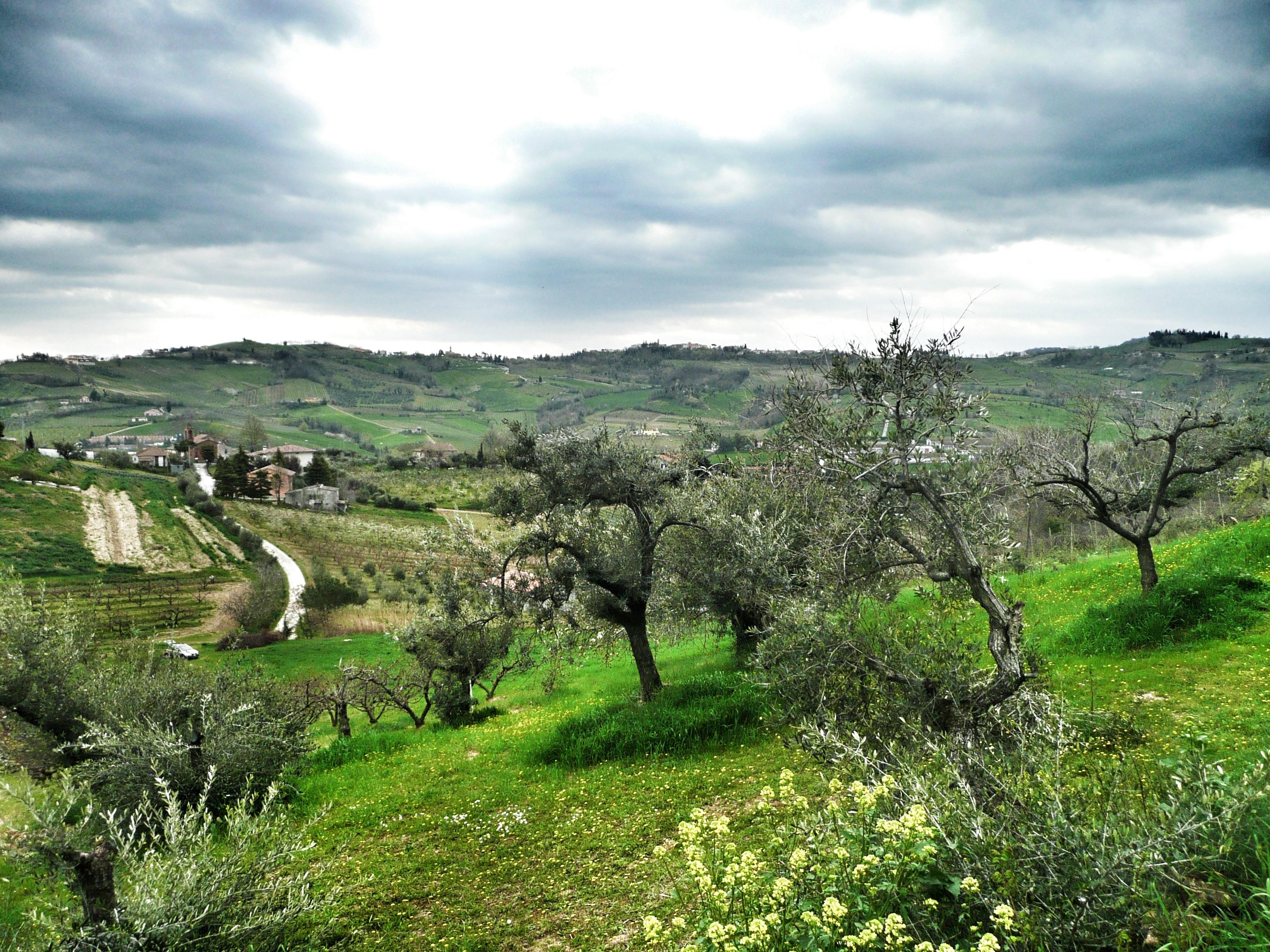 Biken in den Hügeln der Emilia Romagna