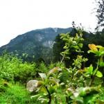 Hoher Fricken: Bergwanderung bei Garmisch-Partenkirchen