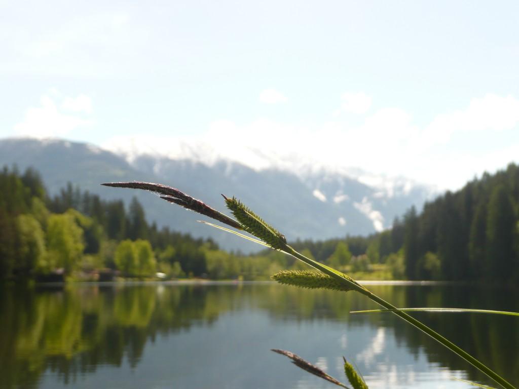 Der einzige Naturbadesee in den Lienzer Dolomiten