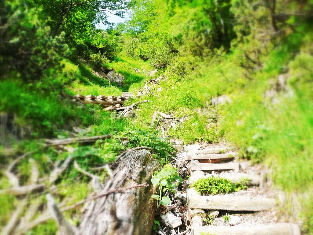 Abstieg durch den Bettlersteig im Wilden Kaiser in Tirol