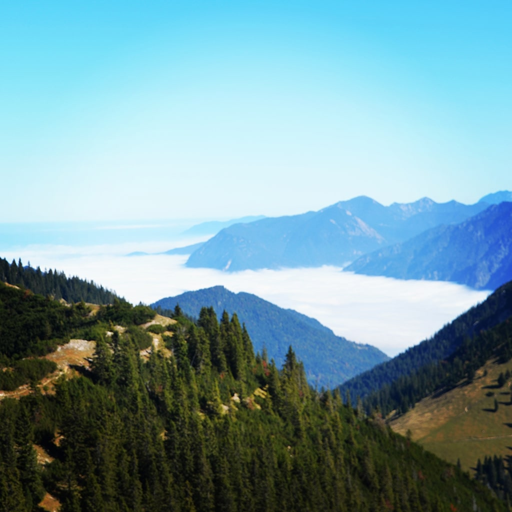 Blick in die Ammergauer Alpen: Hohe Ziegpitz