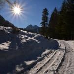 Wandern am Tegernsee: Winterwanderung zur Schwarzen Tenn Alm