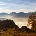 Winterwandern im Mangfallgebirge – zur Gindelalmschneid