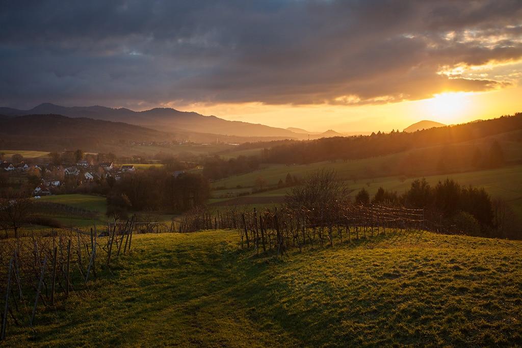 Urlaub im Schwarzwald: Ein Überblick
