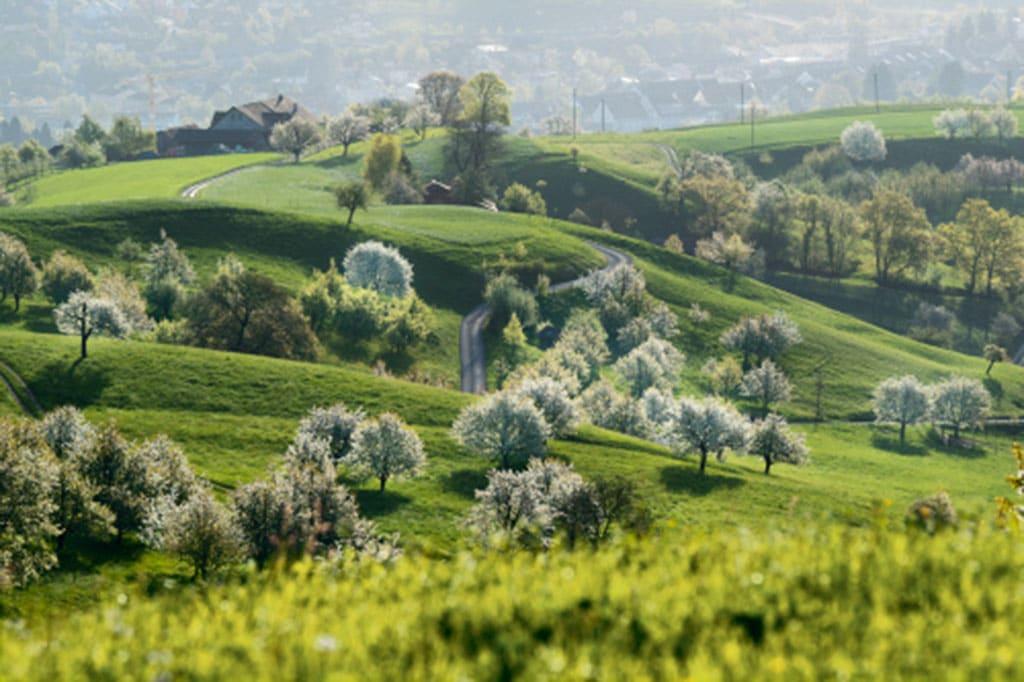 Aargau Kanton