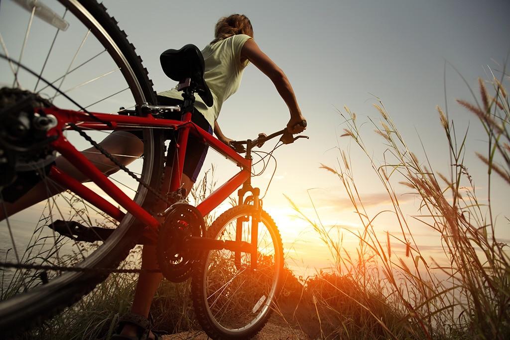 Radfahren und Mountainbike im Kanton Zürich: Ein paar interessante Touren hat das Kanton zu bieten