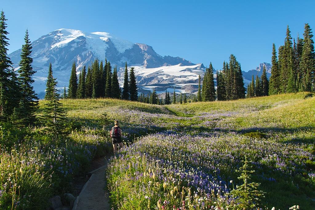 Bayerische Alpen: Bergpanoramen und schöne Talwanderungen