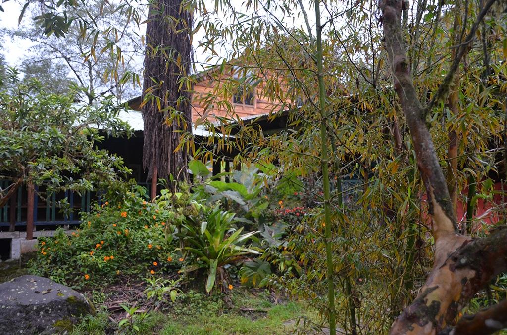 Gut überacht und trocken: Unsere Hacienda im Nebelwald bei Mindo