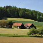 Wandern Odenwald: Erholung in der sagenhaften Landschaft