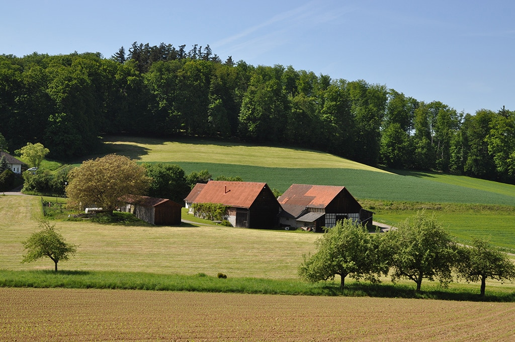 Urlaub Odenwald - Radfahren und Wandern - ein Überblick