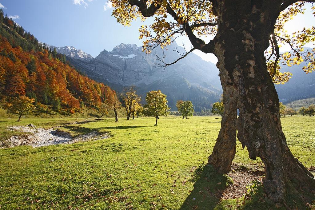 Urlaub Saalfelden Leogang: Ein Wander- und Mountainbike-Eldorado