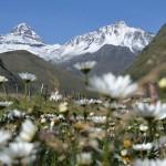 Illiniza Norte Besteigung: Bergsteigen in Ecuador