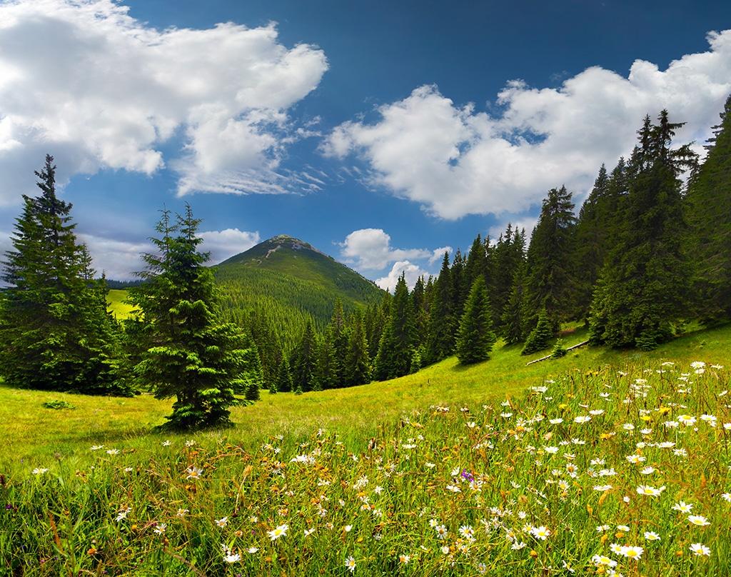 Reutte Tirol: Wandern in den Lechtaler Alpen