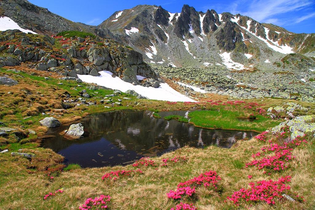 Wildspitz Schweiz - ein Traumberg - Wandern im Kanton Zug - ein Überblick