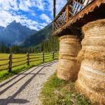 "Urlaub Pusteral – das ""Grüne Tal"" in Südtirol"