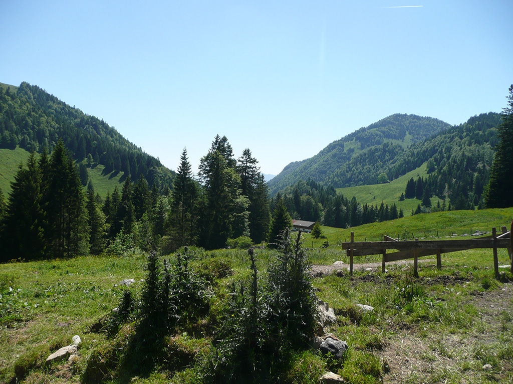 Mountainbike Tour in den Chiemgauer Alpen in Tirol