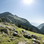 Im Rofangebirge Wandern: Bergwanderung zur Rofanspitze oder zur Ampmoosalm