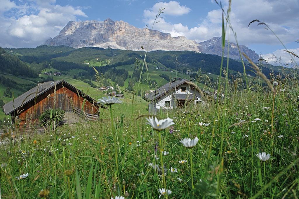 Ein weitläufiges Hochplateau mit zahlreichen Wanderwegen erstreckt sich vor der Kulisse der Dolomiten im Gadertal.(c) Südtirol Marketing Urheber Clemens Zahn