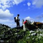 Pielachtaler Pilgerweg – Im Pielachtal pflegt man heute noch die Tradition des Wallfahrens