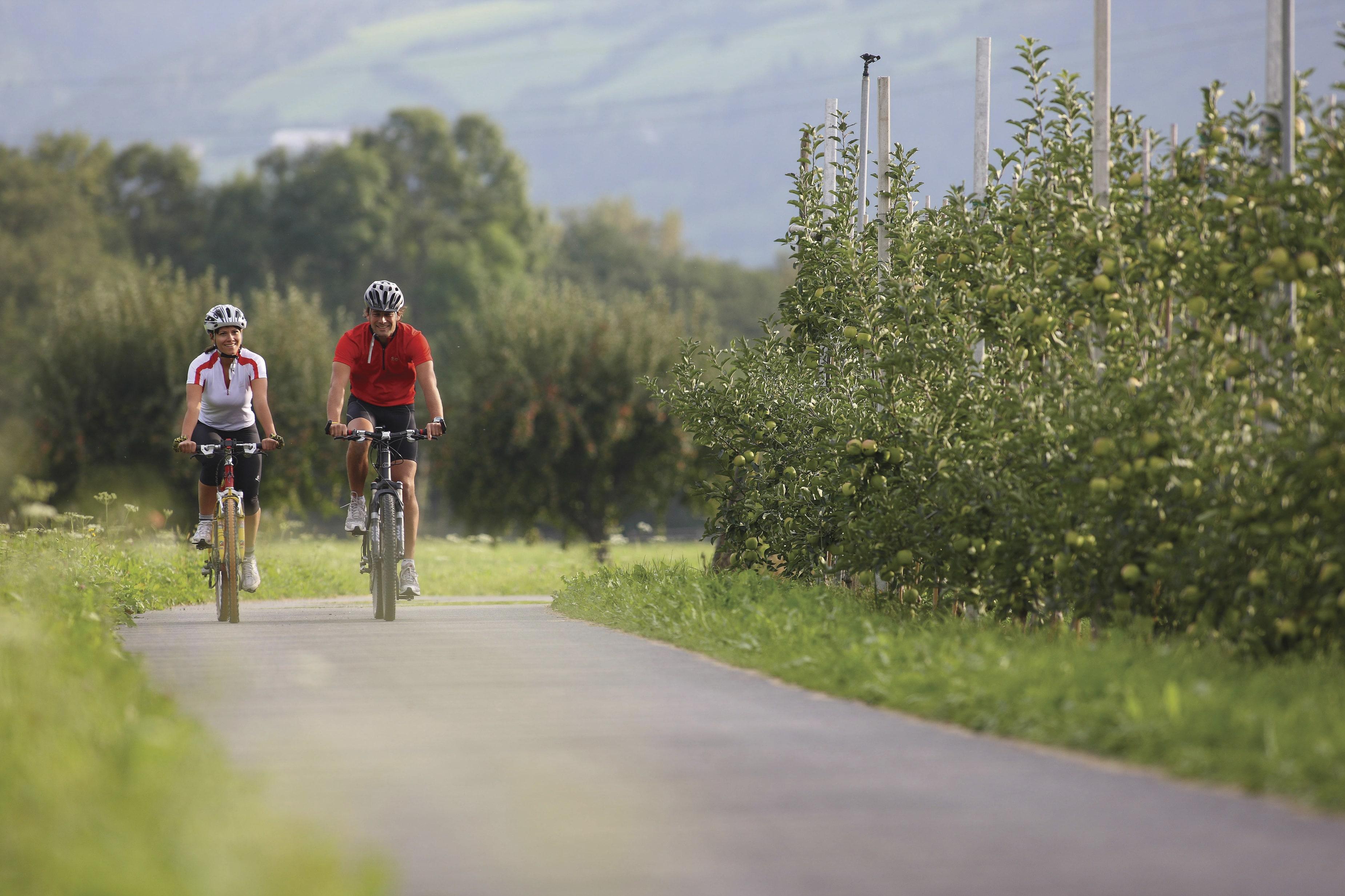 Radfahren Schnalstal