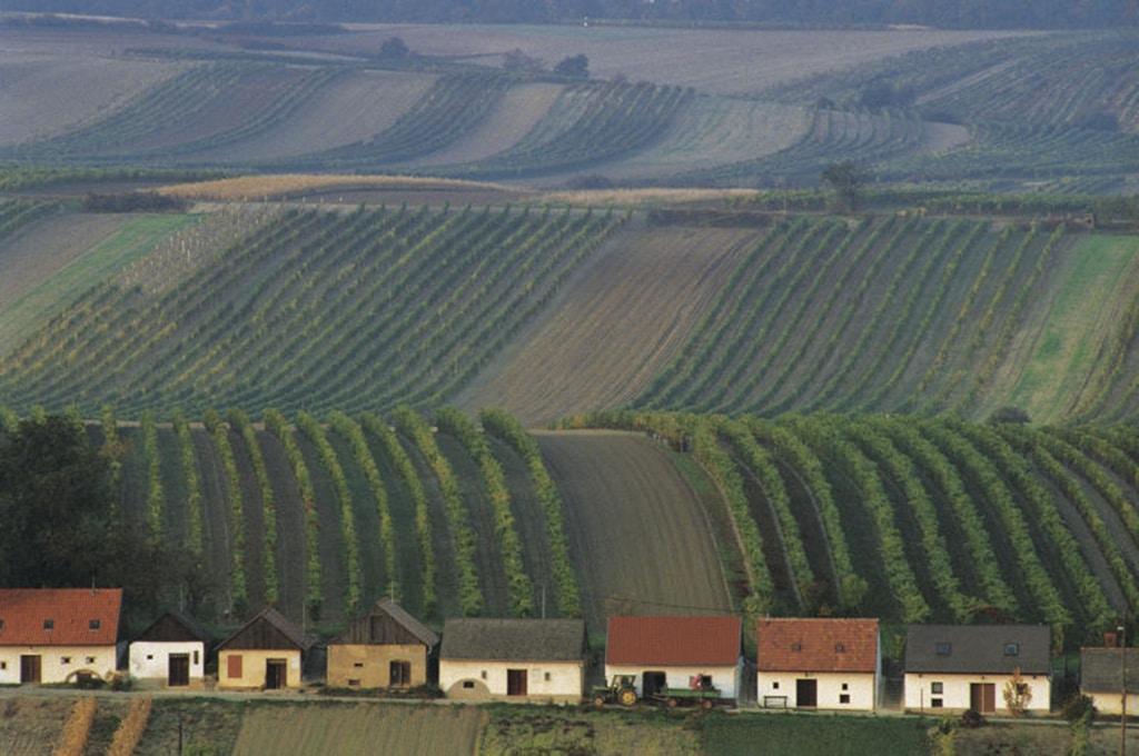 Österreich Weinviertel
