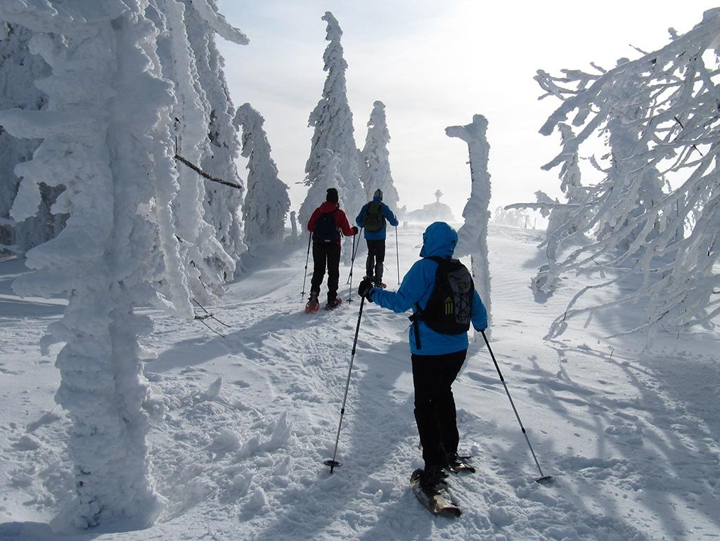 Zwercheck Schneeschuh Wandern
