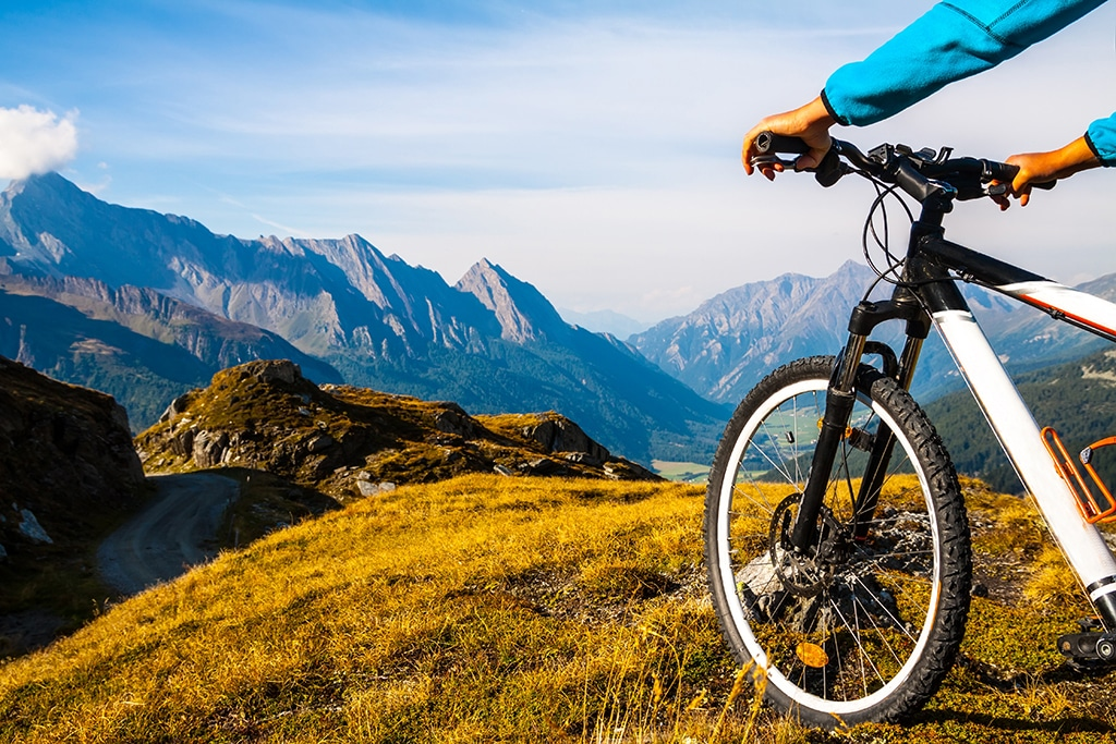 Mountainbike Wallis