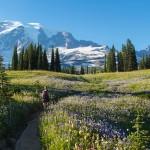 Urlaub Paznauntal – Wandern und Biken in der eindrucksvollen Berglandschaft in Tirol