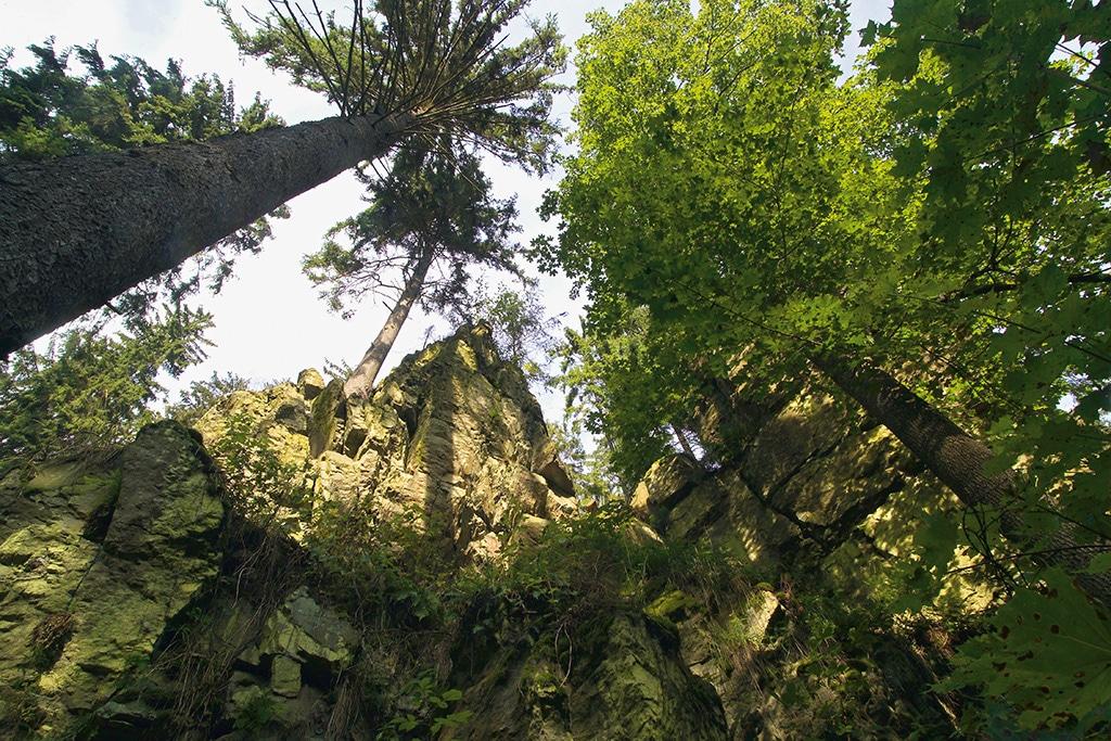 Urlaub im Frankenwald