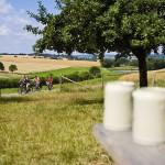 Der Naturpark Steigerwald – Weinkultur und Brautradition – Wandern und Wellness