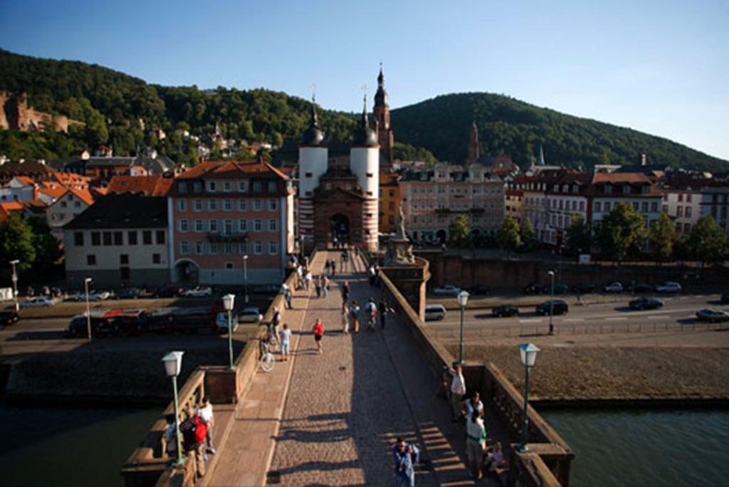 Kurpfalz: Die schönsten Wanderungen und Radtouren im Überblick