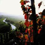 """Die Region Kraichgau Stromberg, dem """"Land der 1000 Hügel"""""""
