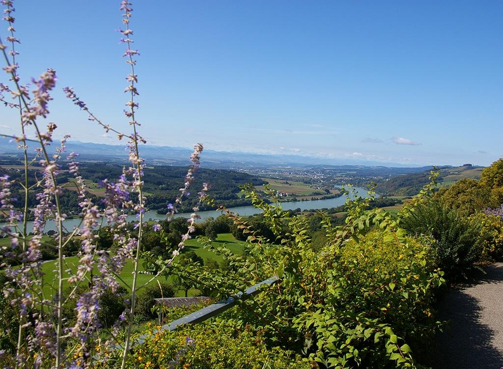 Herbstwandern Wachau