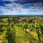 Das Markgräferland – malerische Hügellandschaft zwischen Schwarzwald und Rhein