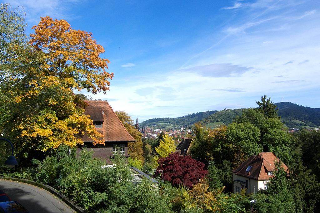Freiburg i Breisgau