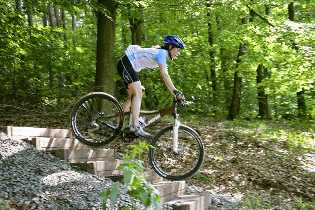 Pfälzerwald Mountainbike