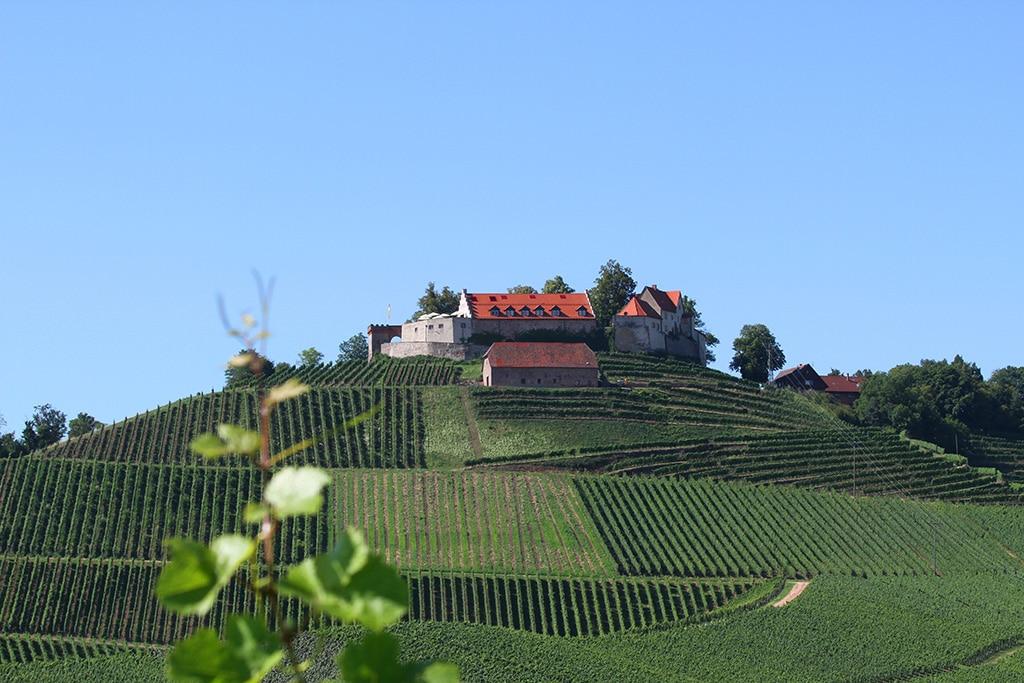 Schloss Staufenberg in Durbach © Hotz STG