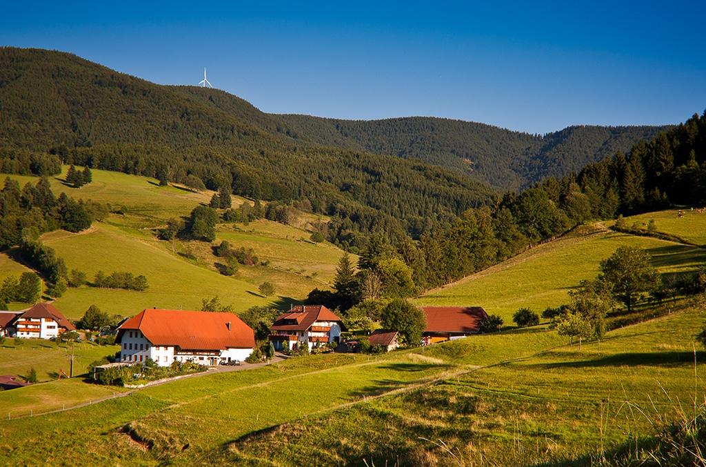 Yach im Schwarzwald