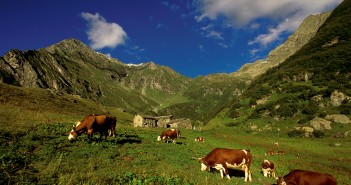 Die Via Alpina - wandern über den Alpenbogen