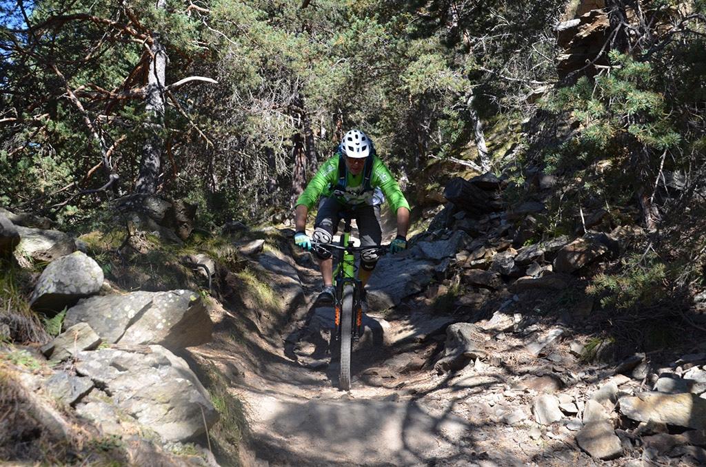 Sonnenberg TrailsTeilweise führt der Trail im oberen Teil durch Schattenspiele im Wald