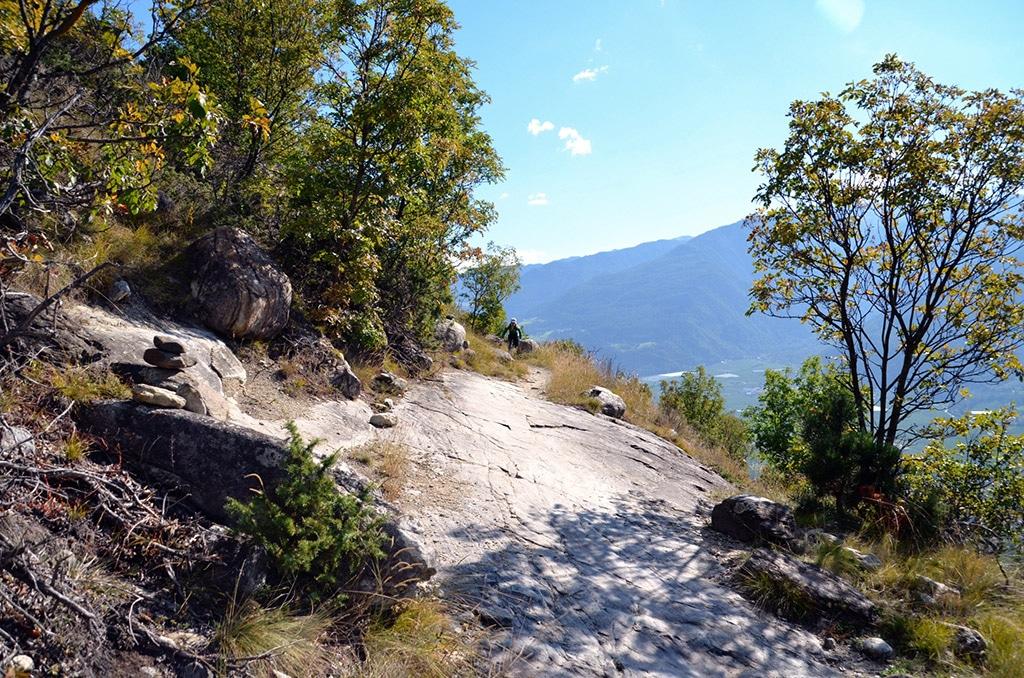 Freeride Trails zwischen Lärchen und Kalkplatten - wer nicht gegen die Uhr fährt, kann das Panorama genießen