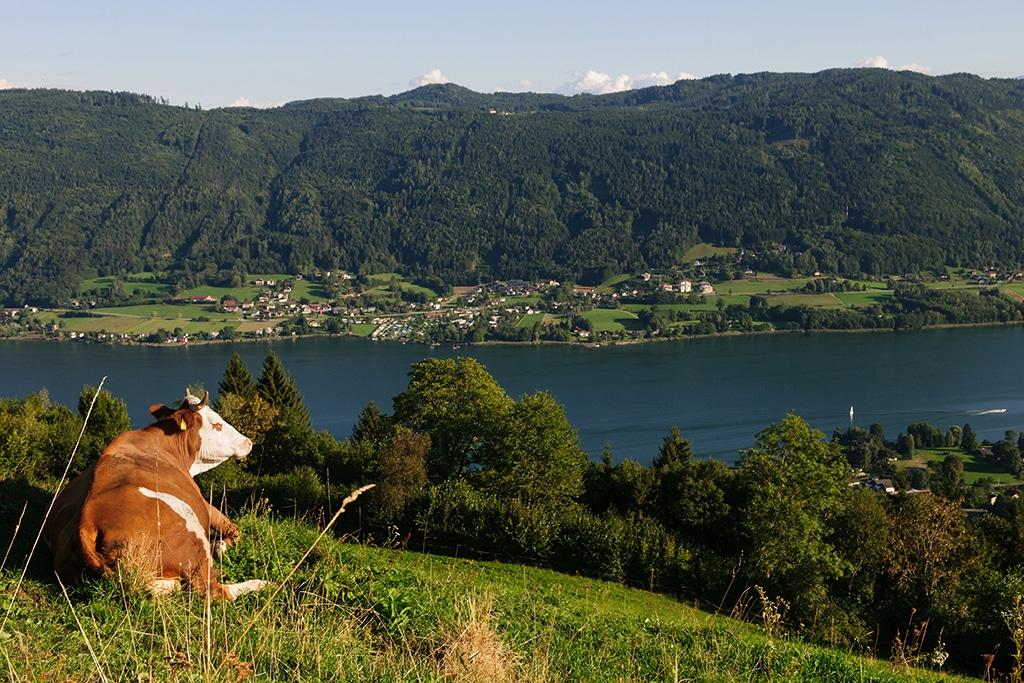 Sassler Rundwanderweg in Kärnten