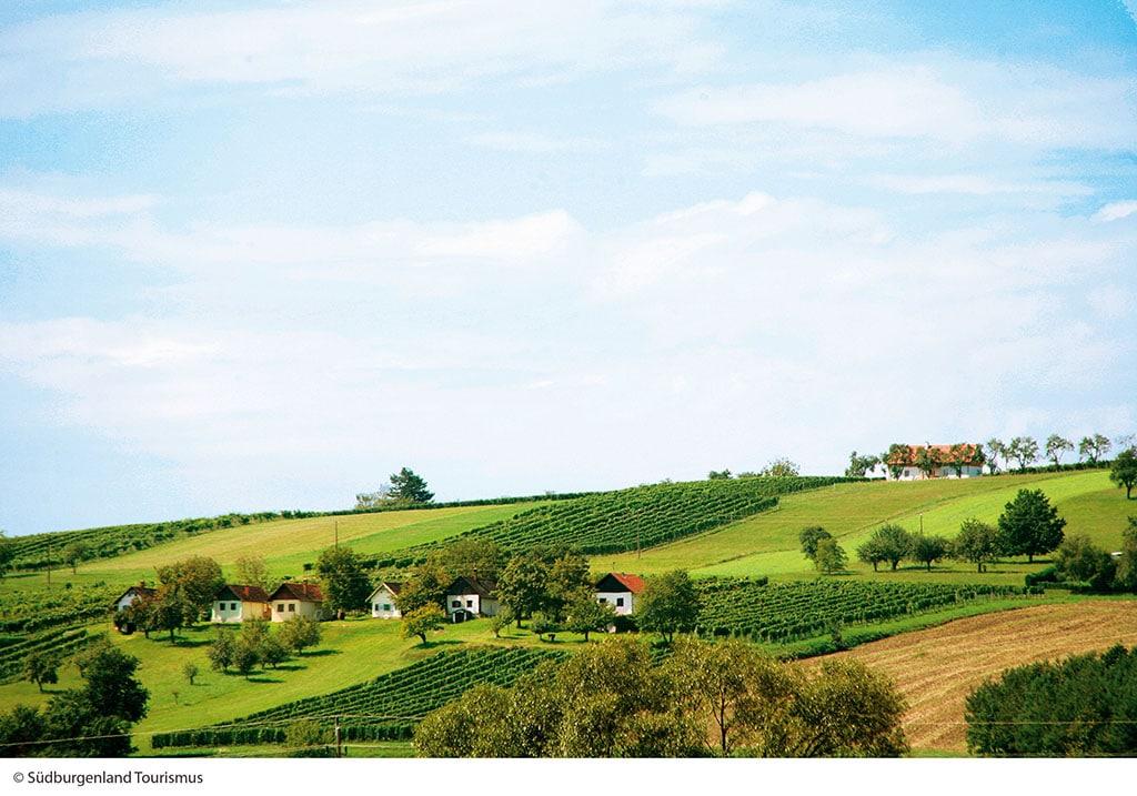 Wintenerberg im Burgenland