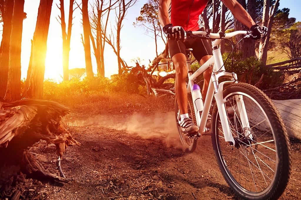 Kaufberatung Mountainbike